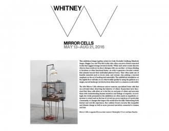 Elizabeth Jaeger in Whitney's Mirror Cells