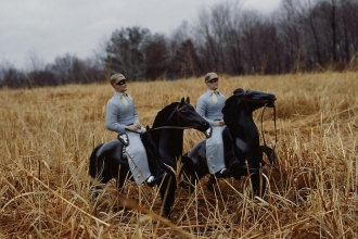 Laurie Simmons and Carroll Dunham joint lecture, Anderson Ranch