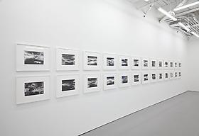 Roland Flexner in Art in America