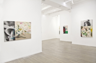 DANIEL HOROWITZ PENSEE SAUVAGE at Galerie RX Paris