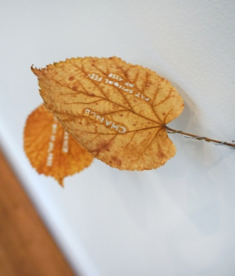 CHANCE Yuken Teruya monopoly cuts on leaves