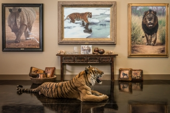 Banovich Limited edition giclée canvases and Wild Accents Collection