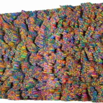Francesca Pasquali: Plastic Resonance