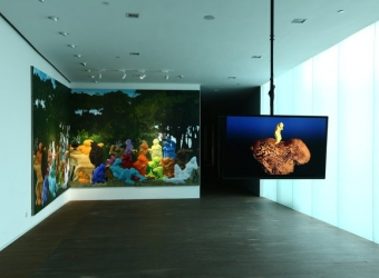 "Miao Xiaochun, Zhang Dali: ""The Shadow Never Lies,"" Minsheng 21st Century Museum, SHANGHAI, CHINA (GROUP EXHIBITION)"