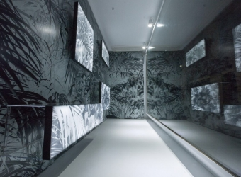 "Ji Zhou: ""Dust,"" street museum, seoul, south korea (solo exhibition)"