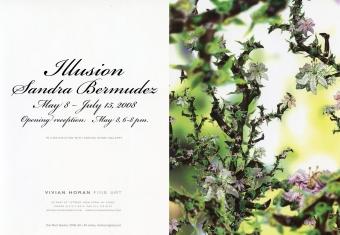 Illusion: Sandra Bermudez