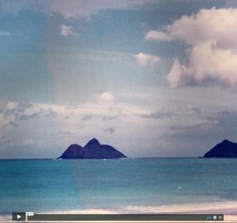 Cleve Gray: The Hawaiian Paintings