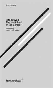 Hito Steyerl: The Wretched of the Screen