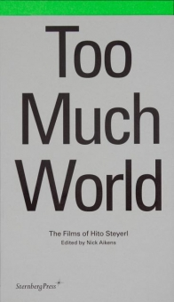 Too Much World - The Films of Hito Steyerl