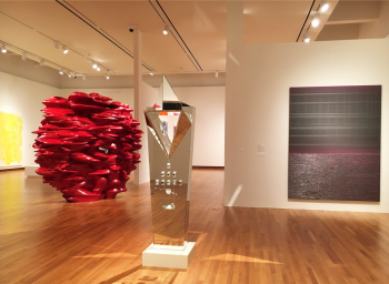 Teresita Fernández at Princeton University Art Museum
