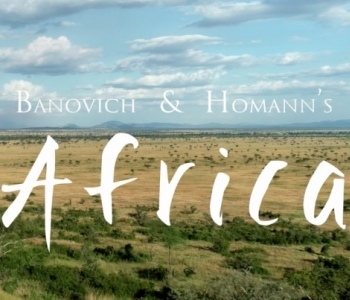 Banovich & Homann's Africa Video