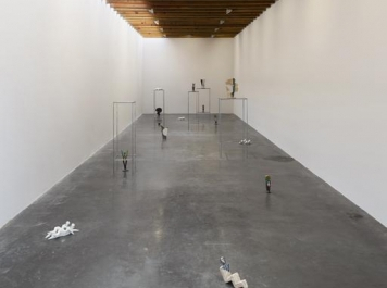 chris sharp invites jimena mendoza to kurimanzutto