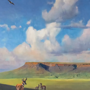 Fort Mountain - Video