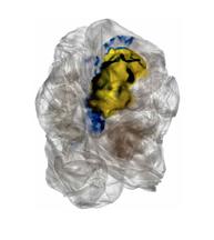 Dean Kessmann Plastic on Paper