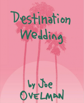 Destination Wedding book cover