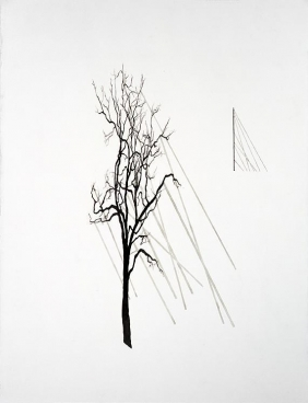 ROXY PAINE Drawing for Facade/Billboard, 2009