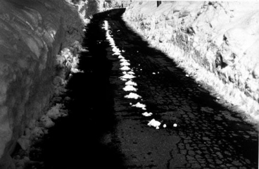 RICHARD LONG Along the Way: An Eleven Day Walk in the Mountains North of Kyoto, 1992