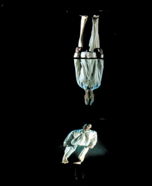 Bill Viola, The World of Appearances, 2000, video installation