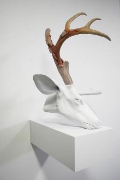 ERICK SWENSON Untitled (Velvet Horn) 无题 (丝绒鹿角), 2009