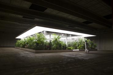 Doug Aitken receives Frontier Art Prize