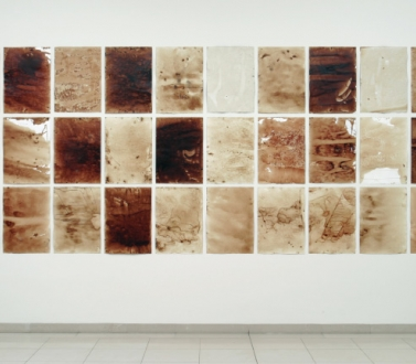Teresa Margolles at Museum fur Moderne Kunst