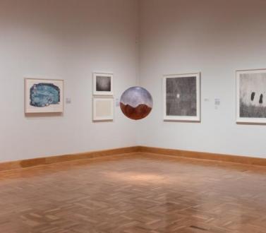 Fred Tomaselli at the Santa Barbara Museum of Art