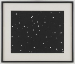 Fred Tomaselli at the Metropolitan Museum of Art