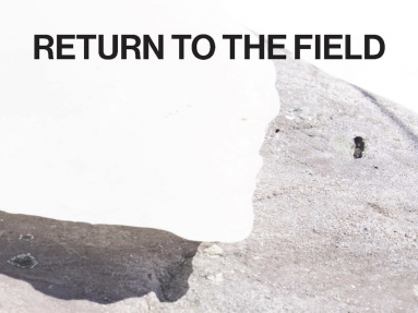 """This is an image of the cover of the publication """"Return to the Field""""."""