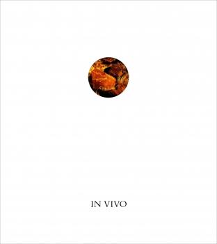 John Knight: IN VIVO