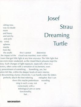 Josef Strau: Dreaming Turtle