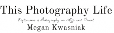 Photographer spotlight – Harvey Stein