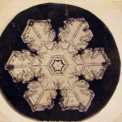 """Wilson """"Snowflake"""" Bentley"""