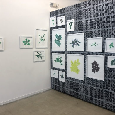 Hannah Cole featured in the Front Burner exhibition at the North Carolina Museum of Art