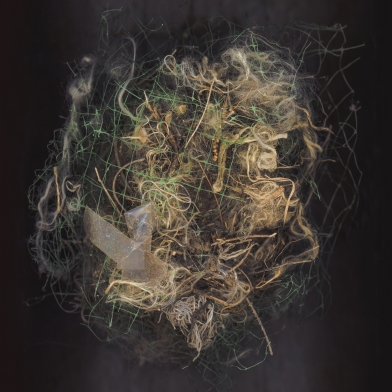 Colby Caldwell has a solo exhibition at the Weizenblatt Gallery at Mars Hill University
