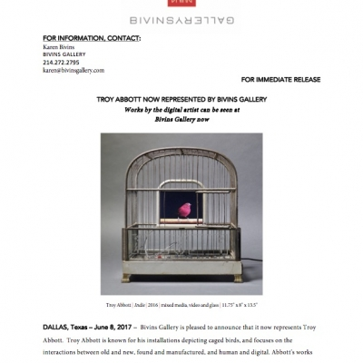 Press release: Troy Abbott represented by Bivins Gallery