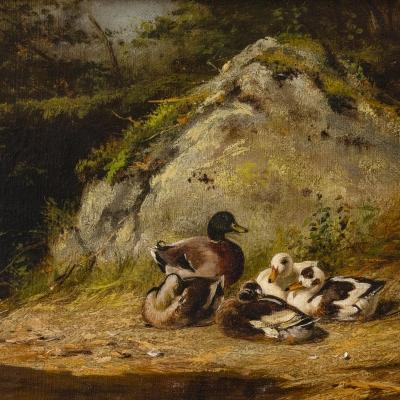 Arthur Fitzwilliam Tait (1819–1905), Ducks Sunning, 1882, oil on canvas, 10 x 14 in. (detail)