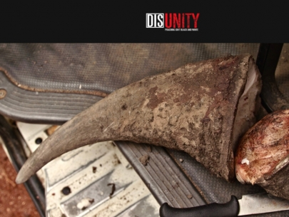 Disunity-Trailer