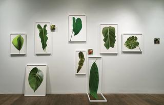 Eileen Neff at Philadelphia Museum of Art