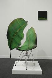 Eileen Neff: Bernheim Artists in Residence