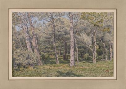 Morgat, Le Bois de Pins