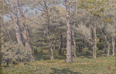 Henri Rivière, Morgat, le Bois de Pins