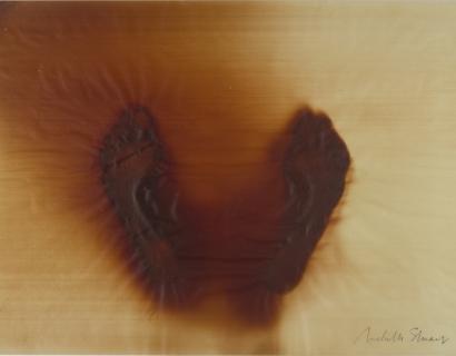 Artnet News on Joan Lyons