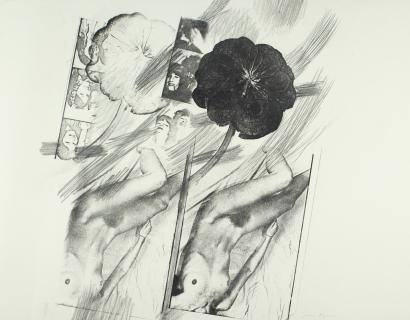 ArtDaily on Joan Lyons