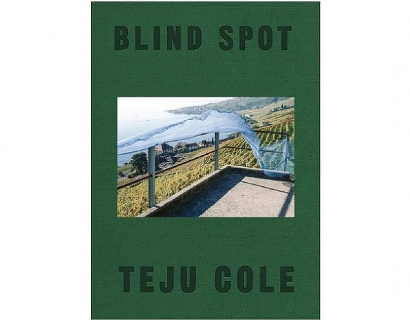 Santa Barbara Independent on Teju Cole