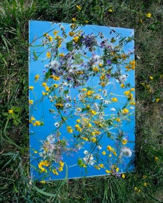 Brea Souders - Mille Fleurs, 2011 Chromogenic print   Bruce Silverstein Gallery