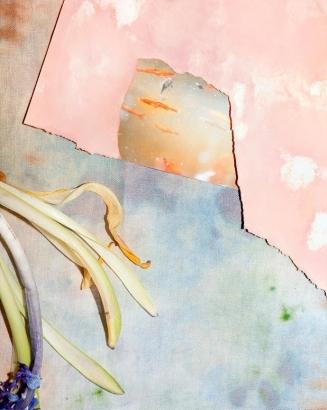 Brea Souders - Under Water, 2012 Archival inkjet print   Bruce Silverstein Gallery