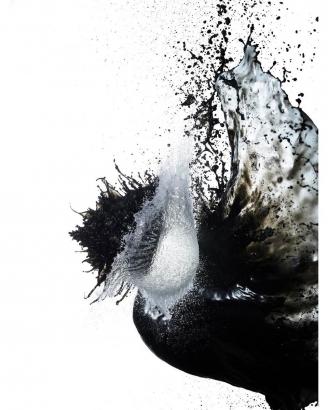 Shinichi Maruyama - Kusho #9, 2006 Archival pigment print ; Bruce Silverstein Gallery