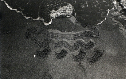 John Wood - Beach Drawing, 1983 Gelatin silver print | Bruce Silverstein Gallery