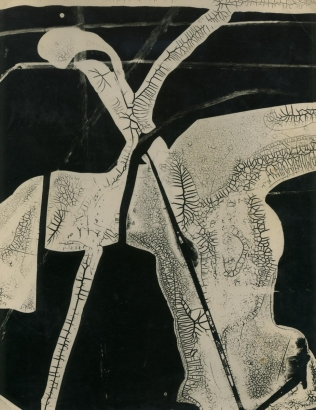 Gyorgy Kepes- Untitled, 1938 Cliche verre photogram, printed c. 1938   Bruce Silverstein Gallery