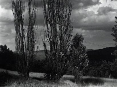 Alfred Stieglitz - Lake George, c. 1930  | Bruce Silverstein Gallery
